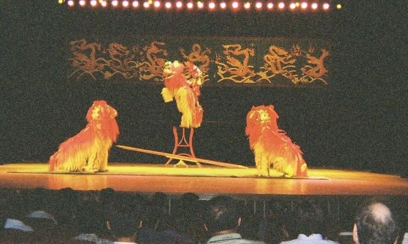 Chinese acrobatic circus