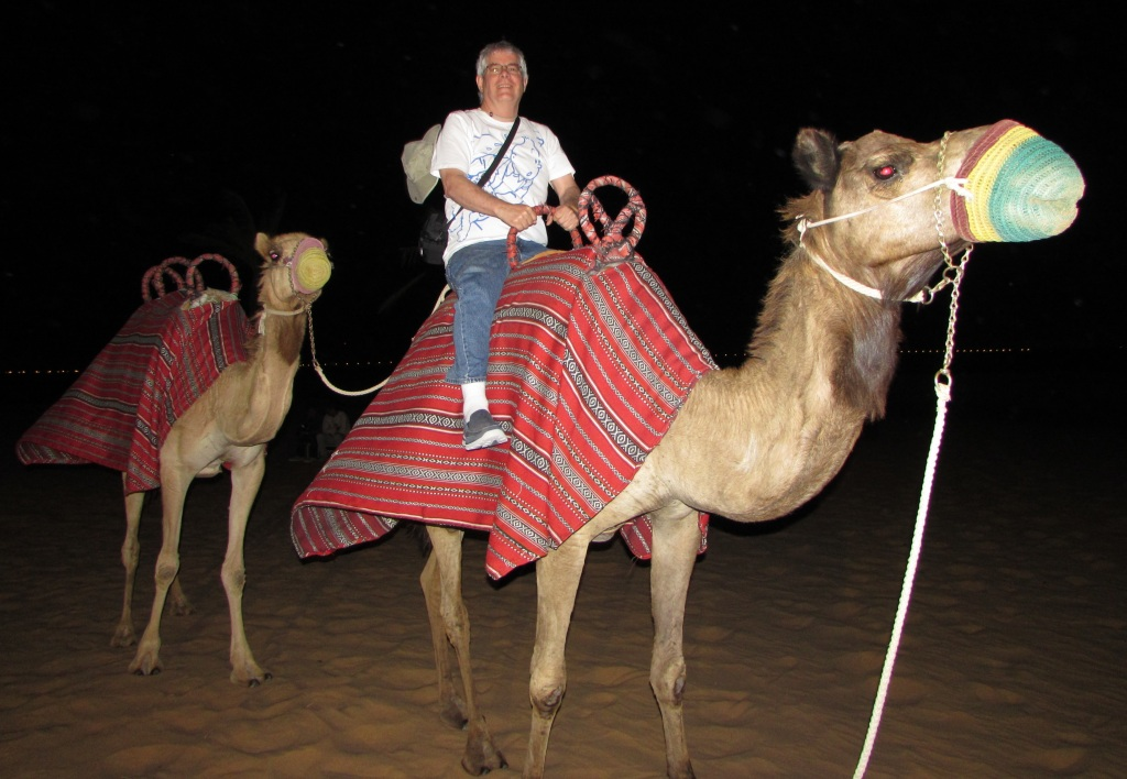 Camel riding - the hard part is getting down