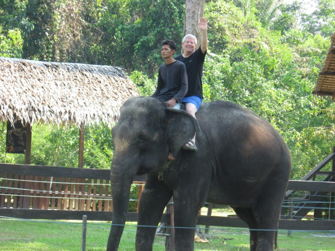 My first elephant ride