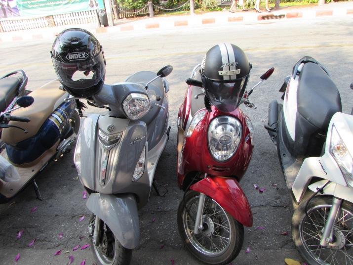moto14