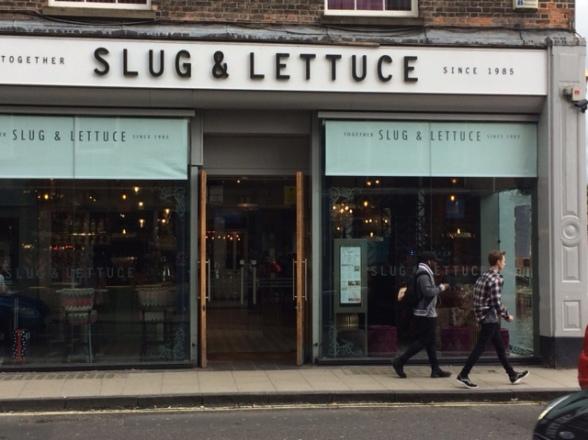 York slug and lettuce